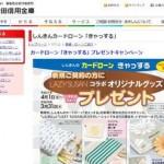 秋田信用金庫カードローンでお金借りる!